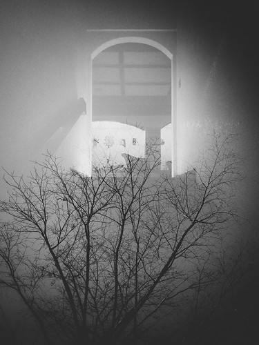 sunset indoors stayhome quarantine doubleexposure snapseed porch trees silhouette weekly