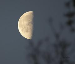 April 14 moon