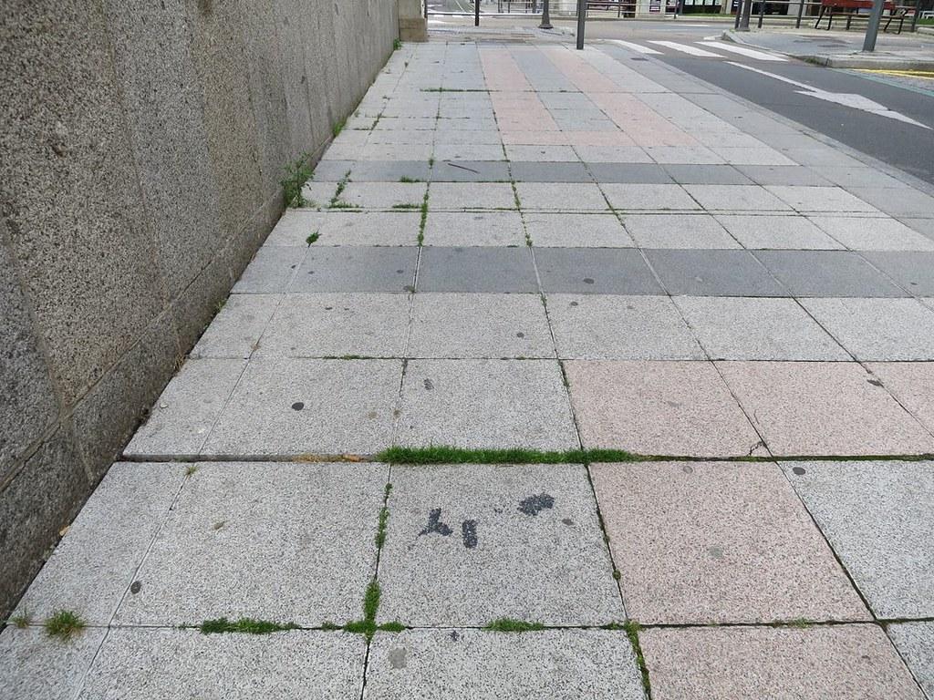 Hierba en las aceras y plazas.  (20)