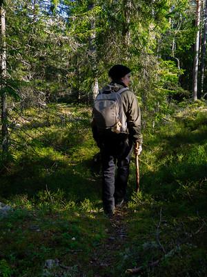Störsvik-luonnonpuisto