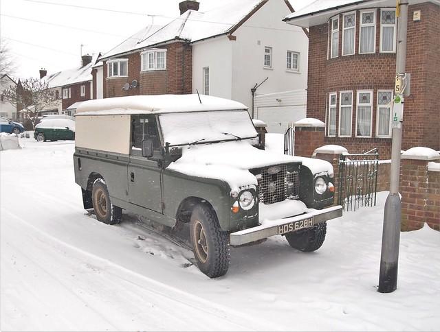 Snowy Landie - 2