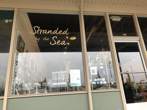 Book signing at Stranded by the Sea in Edmonds, Washington. July 2019. Read more EvinOK