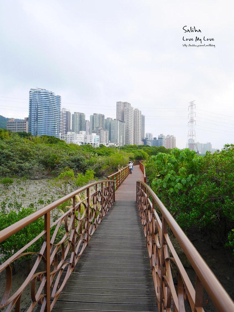 淡水紅樹林站一日遊景點踏青推薦淡海輕軌紅樹林生態步道好走輕鬆唯美 (2)