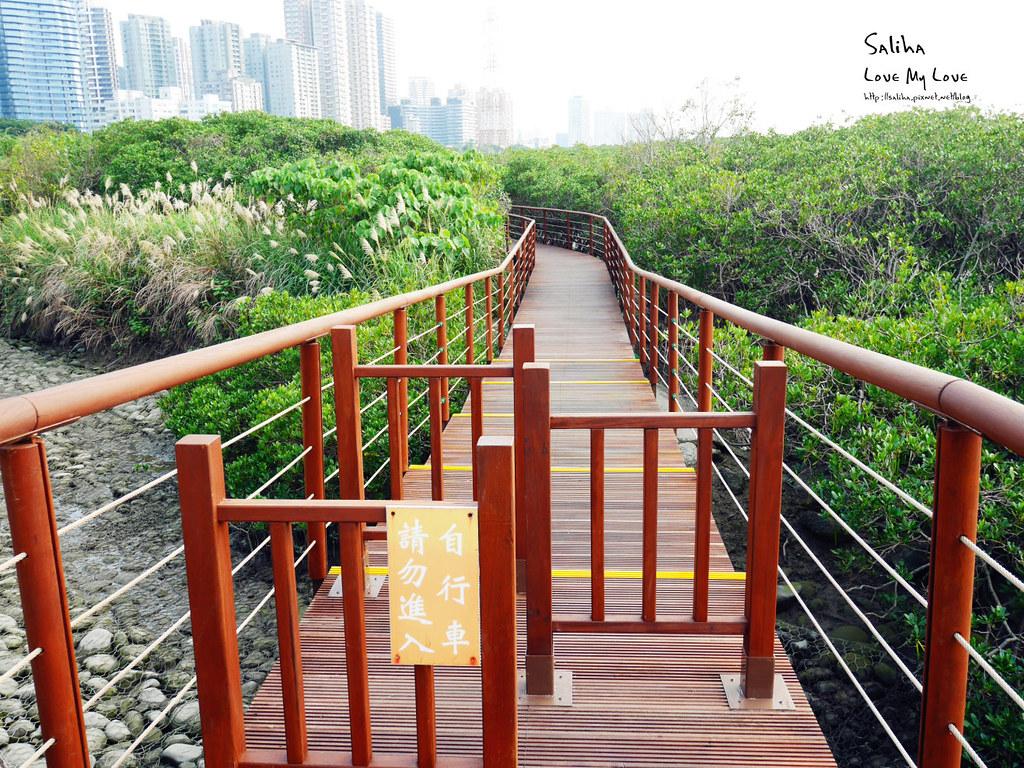 淡水一日遊輕軌附近景點推薦紅樹林生態步道淡水站老街秘境 (2)