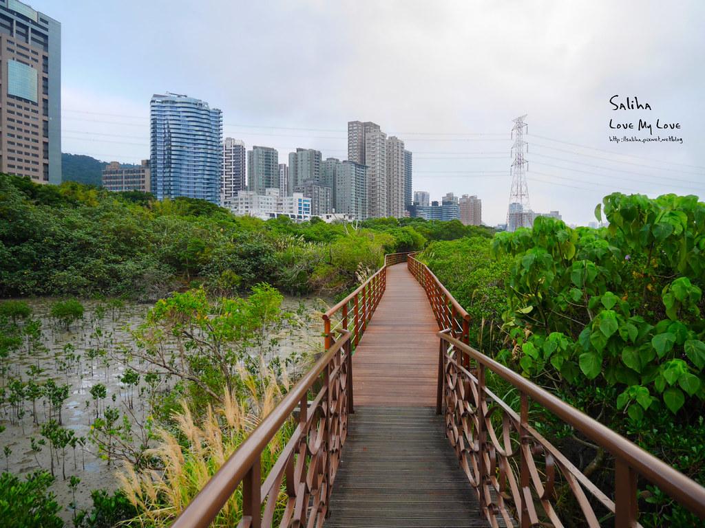 台北一日遊淡水老街附近景點推薦紅樹林步道好拍ig打卡景點