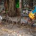 Bangladesh: COVID-19