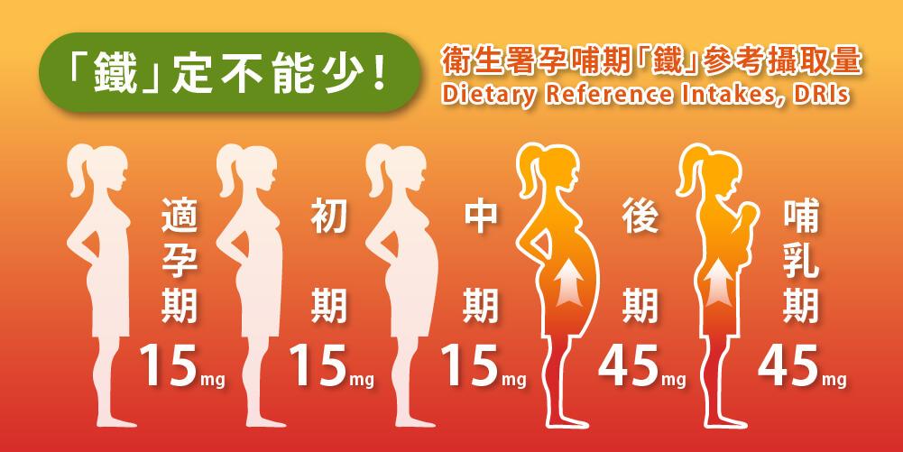孕哺兒,哺多多,懷孕補品,哺乳補品,卵磷脂,燕窩,珍珠粉,凍晶鐵,葉酸,母乳哺餵,媽媽茶,發奶茶