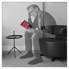 Reading La Peste by Albert Camus