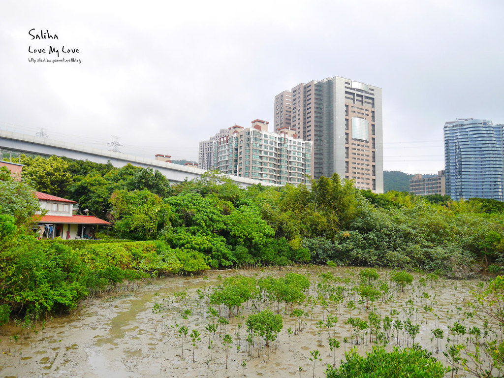 淡水紅樹林站一日遊景點踏青推薦淡海輕軌紅樹林生態步道好走輕鬆唯美 (3)