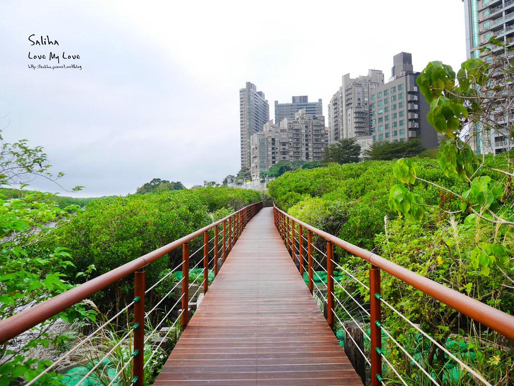 淡水紅樹林站一日遊景點踏青推薦淡海輕軌紅樹林生態步道好走輕鬆唯美 (1)
