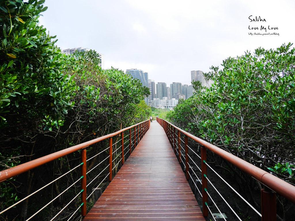 淡水一日遊輕軌附近景點推薦紅樹林生態步道淡水站老街秘境 (4)