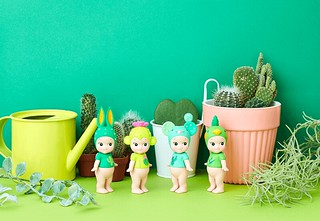 化身清新療癒的多肉植物~DREAMS「Sonny Angel 仙人掌系列」盒玩(Sonny Angel mini figure Cactus Series)2020春季限定