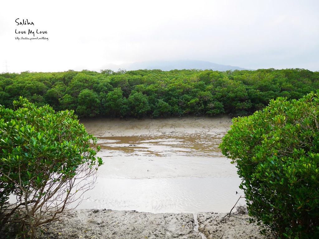 淡水一日遊輕軌附近景點推薦紅樹林生態步道淡水站老街秘境 (8)