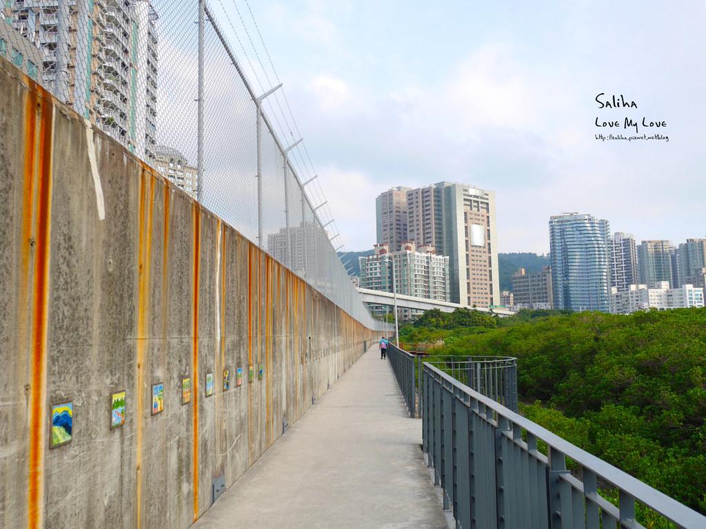 台北一日遊景點私房秘境推薦淡水紅樹林保留區 (7)