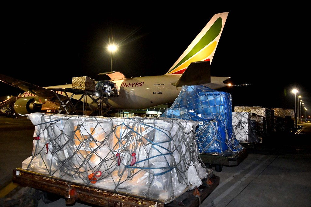 Arrival of medical supplies donated by the People's Republic of China to South Africa