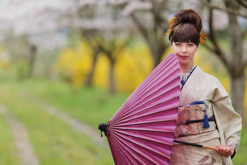 Cherry blossoms, portrait.