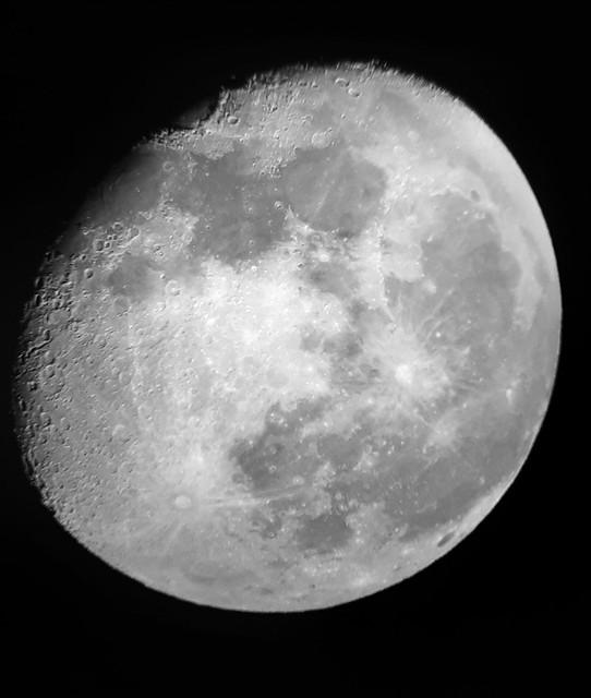 VCSE - A Hold - Kukoveczné Takács Henrietta
