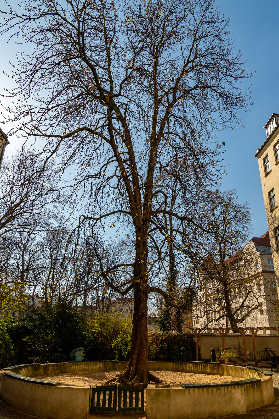 Hackesche Höfe - Kastanienhof