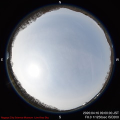 D-2020-04-16-0900_f