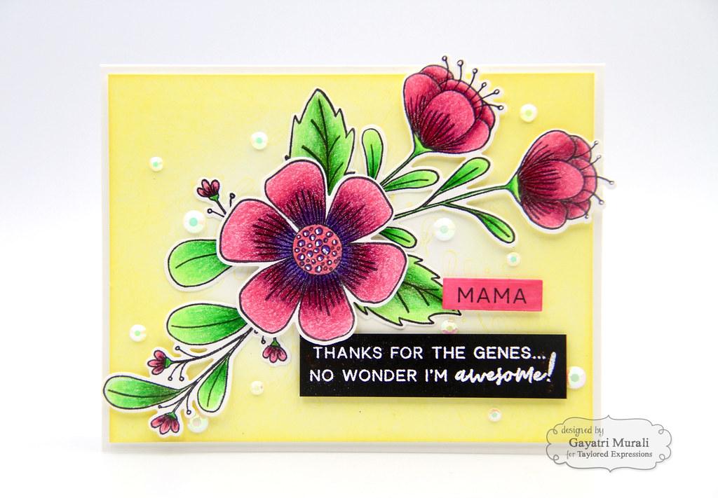TE Extra card