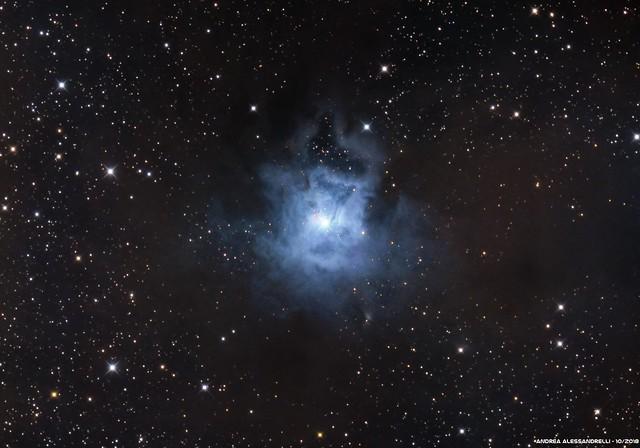 NGC 7023 - Caldwell 4 - Iris Nebula