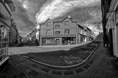 OldOwlFox by wynn_owen