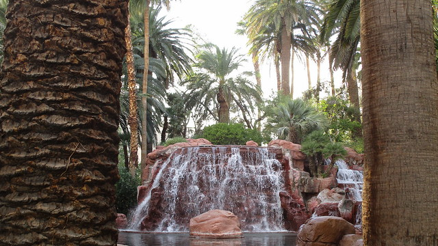 Nevada - Las Vegas: The MIRAGE - palm trees & water - in the desert!