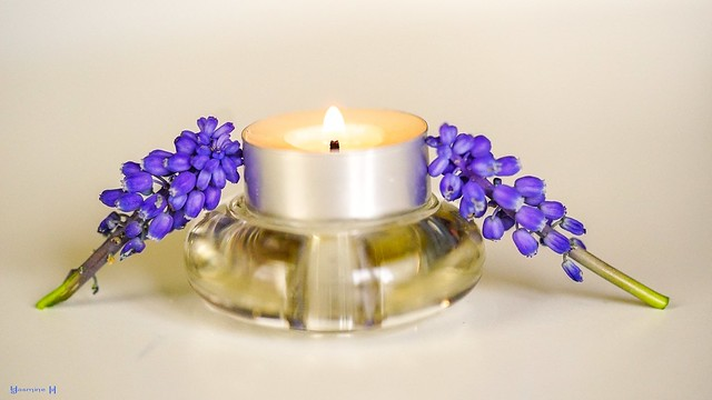 Candle Holder - 8305