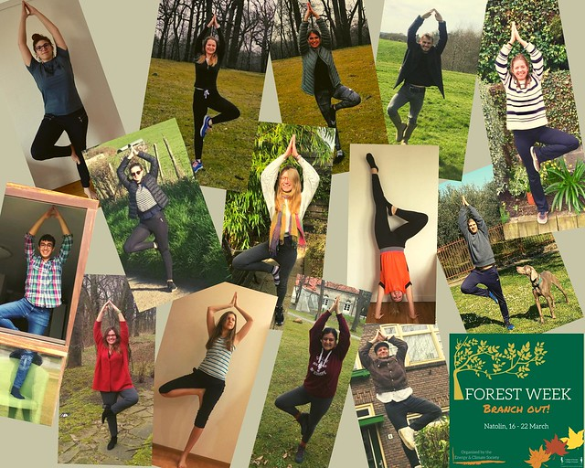 Natolin Forest Week Photo Competition