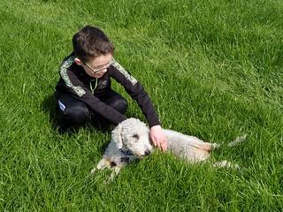 Happy in her grass field