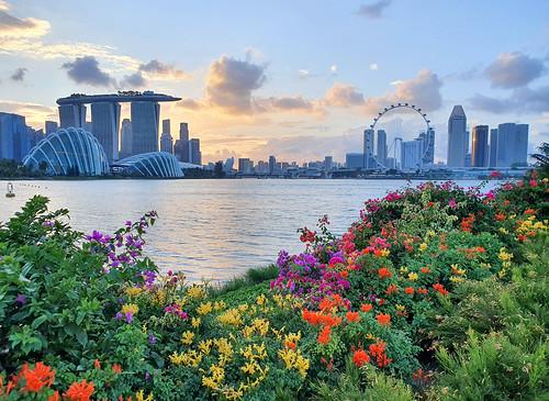 20200219190055 singapore