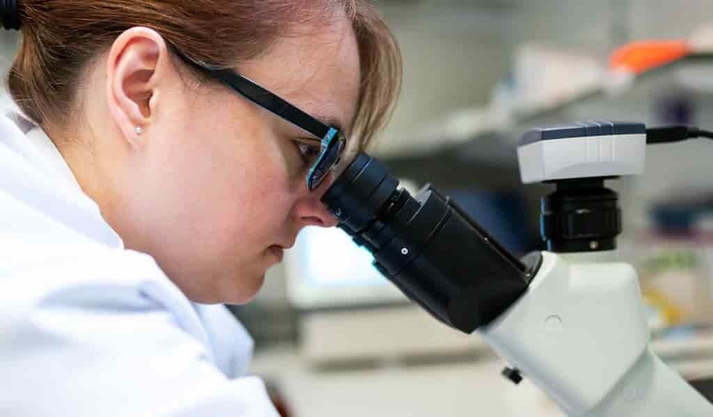 un-nouveau-médicament-contre-le-cancer-réduit-les-tumeurs