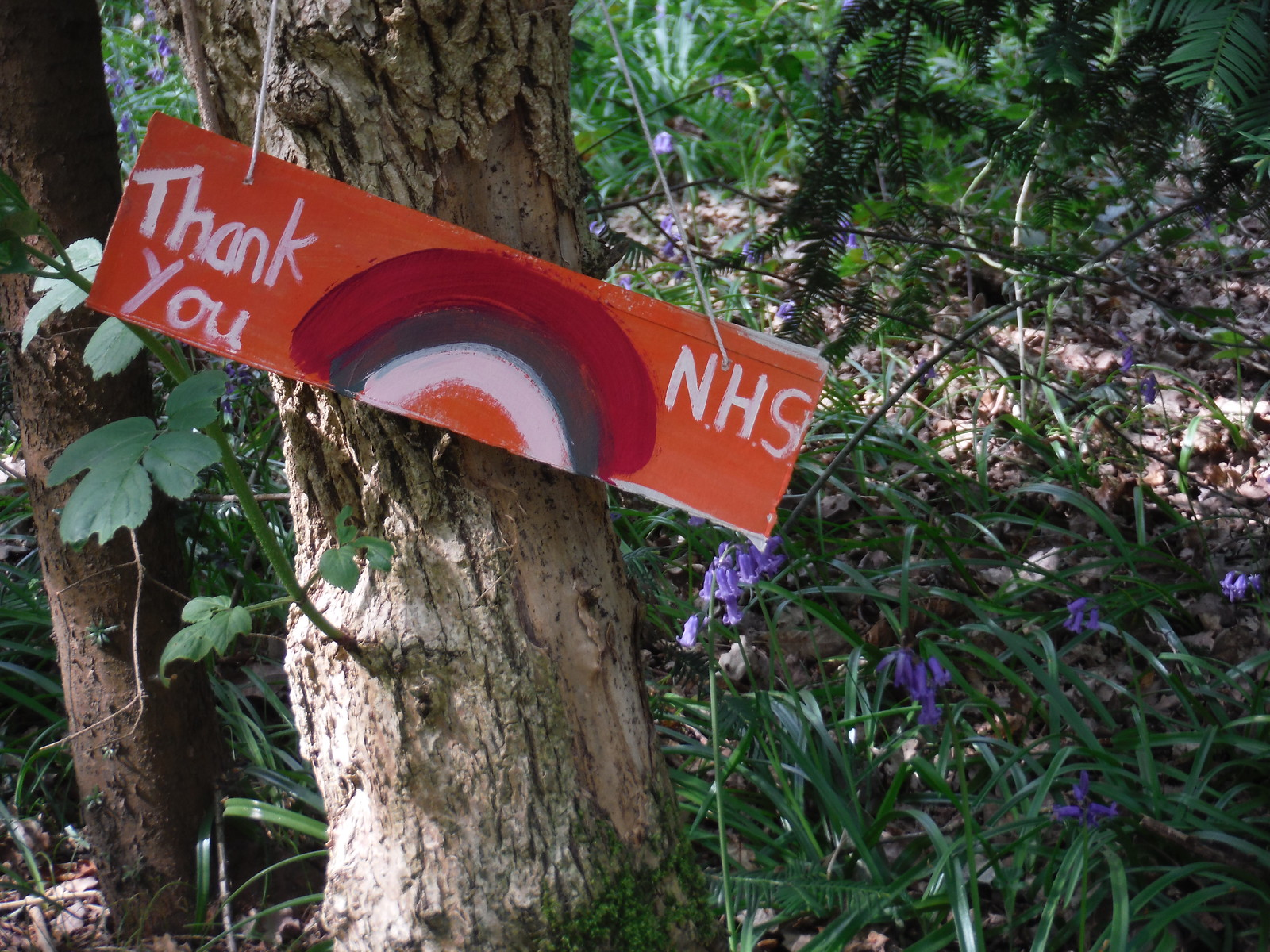 Thank You, NHS! SWC Short Walk 46 - Beckenham Place Park (Ravensbourne to Beckenham Hill)