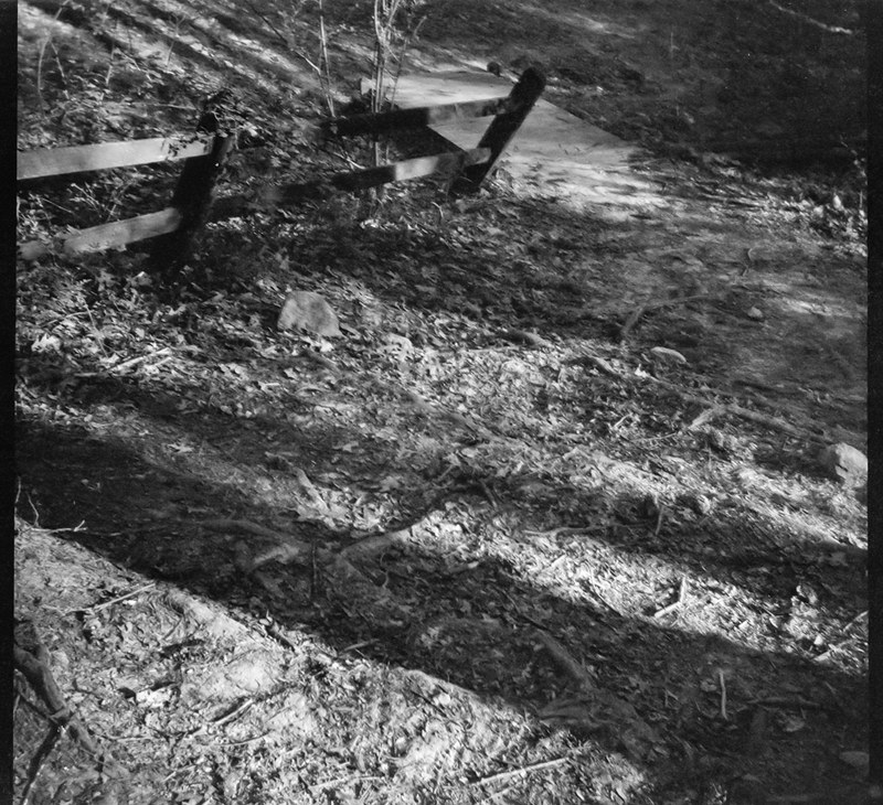 zig zag rhythmic movement, cast shadows, split rail fence, forest, Richmond Hill Park, Asheville, NC, Bencini Koroll, Ilford FP4+, Moersch Eco Film Developer, mid April 2020