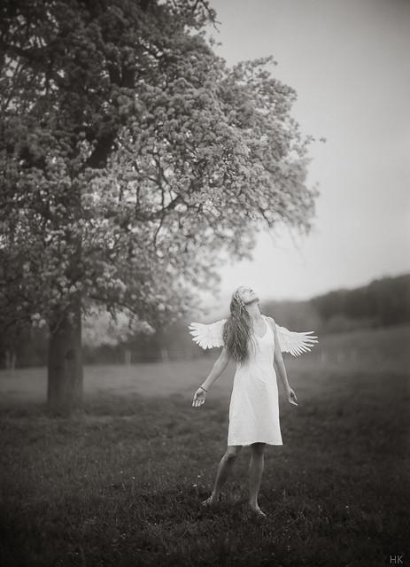 homesick angel