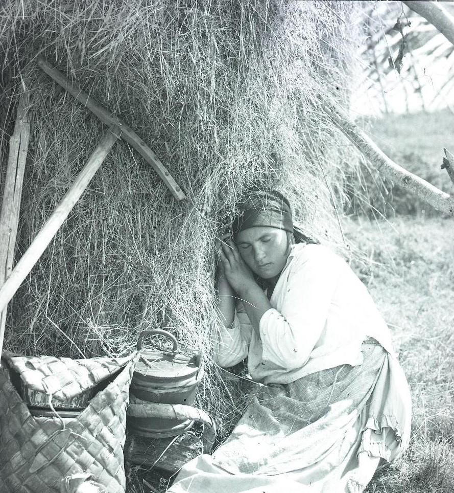 На отдыхе во время сенокоса