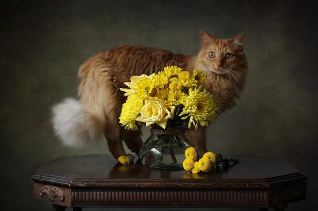 Leo&Flowers
