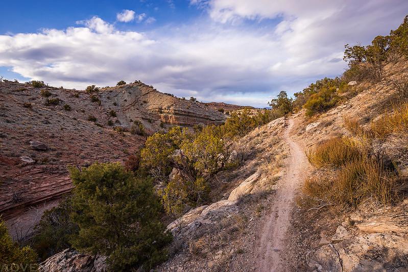 The Ribbon Trail