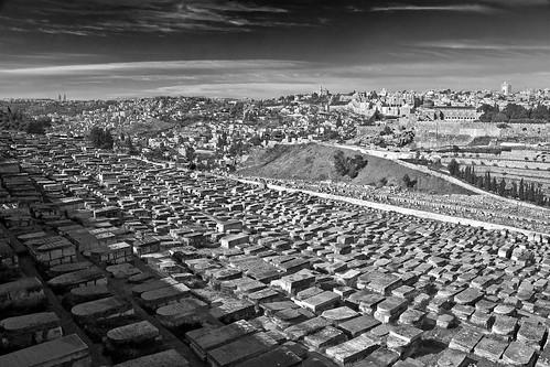 israel midleeast nikon graves cemetery blackandwhite monochrome panorama landscape jerusalem mountolives