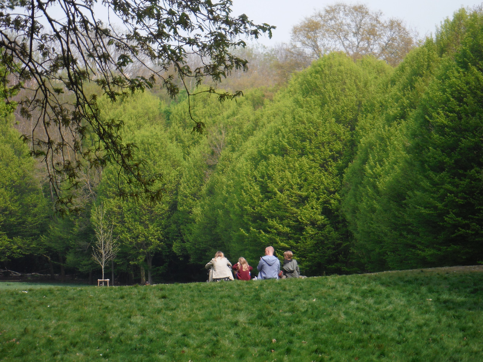 Family in Meadow, enjoying the views SWC Short Walk 46 - Beckenham Place Park (Ravensbourne to Beckenham Hill)