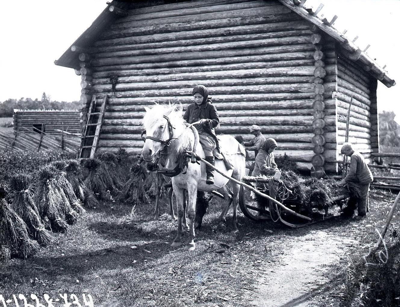 Плетение каната для невода и вожжей