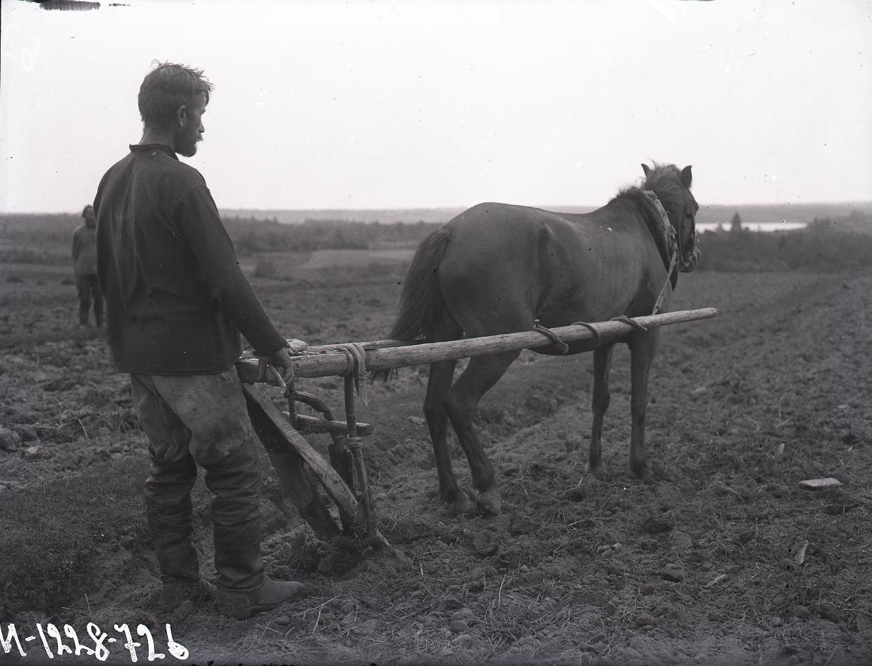 Крестьянин, пашущий поле сохой.