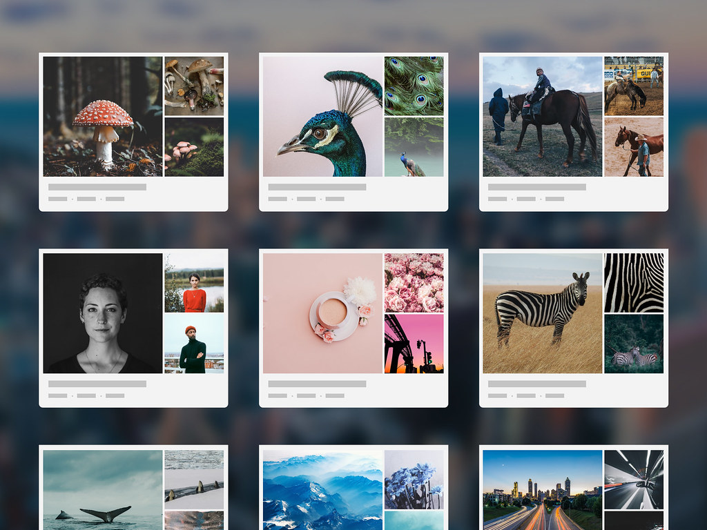Flickr Galleries
