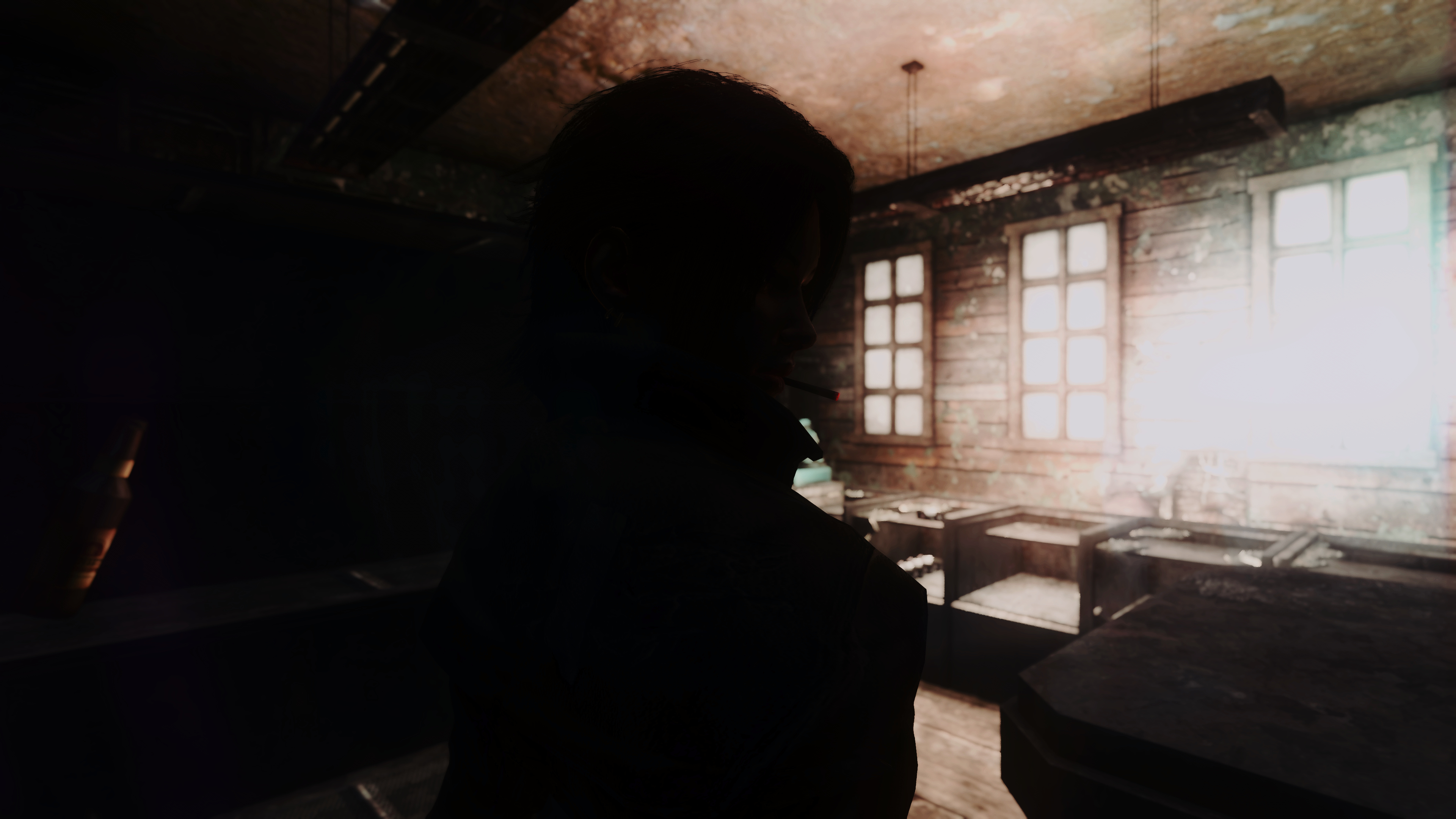 Fallout Screenshots XIV - Page 21 49782803551_7f6de219cc_o