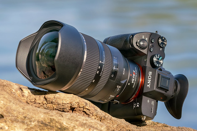 SONY ⍺7III with Tamron SP 15~30mm ƒ/2.8 Di VC by SONY ⍺7RII with Canon EF100~400L IS II