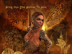 Bring out the Animal in you