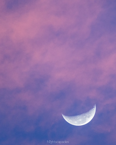 morning moon home night astrophotography astronomy jupiter miranda sky twilight australia newsouthwales sutherlandshire