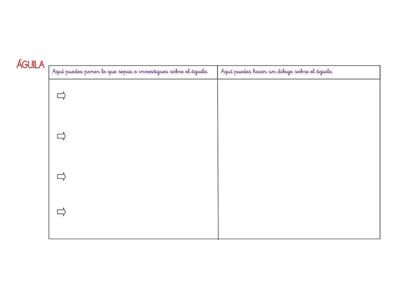 tigre y águila pdf_page-0003