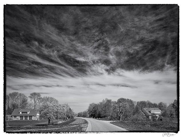 Spring in Flevoland