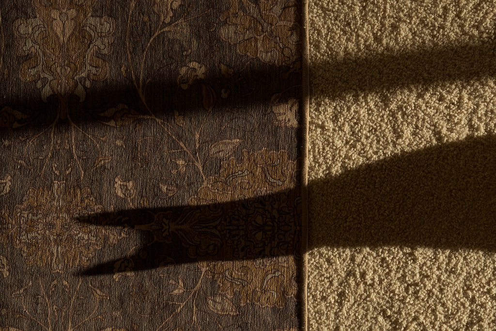 The shadow of our cat Sam resembles the profile of Batman on the carpet of our living room in our house in Scottsdale, Arizona in January 2020